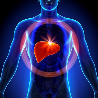Show details for Liver Function Profile